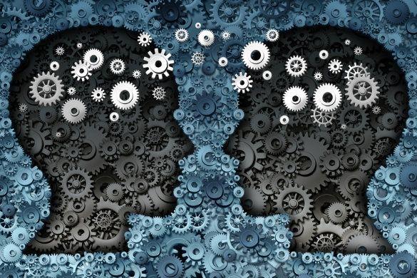 Autoconhecimento e Neurociência comportamental