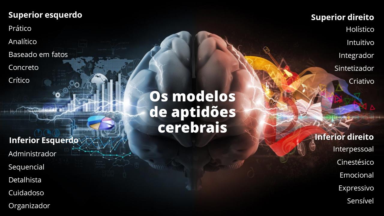 aprendizado e os 4 modelos de aptidão cerebral