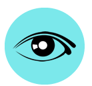 aprendizado: sistema visual